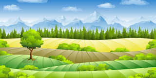 Summer landscape with fields. Trees and mountains Royalty Free Stock Photography