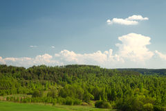Summer landscape of fields and woods Royalty Free Stock Photo