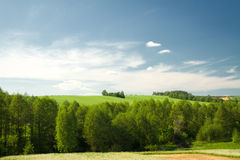 Summer landscape of fields and woods Stock Photo