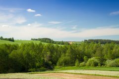 Summer landscape of fields and woods Stock Images