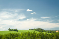 Summer landscape of fields and woods Royalty Free Stock Images