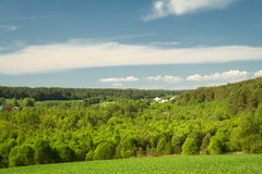 Summer landscape of fields and woods Royalty Free Stock Image