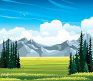 Summer landscape with fir, meadow and mountains. Stock Photo