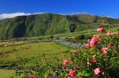 Summer landscape on Flores Island