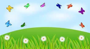 Summer landscape with flowers and butterflies. Vector  illustration Royalty Free Stock Photo
