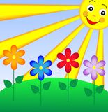 Summer landscape with flowers and sun. Illustration Royalty Free Stock Photo