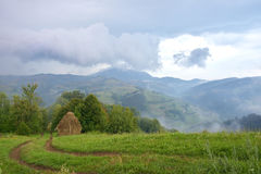 The Summer landscape with fog over mountain village. Road on green meadow Stock Photography
