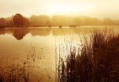 Summer landscape, fog on river stock photography