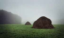 Summer landscape with foggy morning and haystacks on a field Stock Images