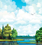 Summer landscape with forest, trees, lake Stock Image