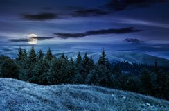 Summer landscape with forested hills at night. In full moon light. beautiful scenery of Svydovets mountain ridge, Ukraine Royalty Free Stock Image