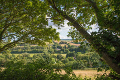 Summer Landscape Framed By Trees Royalty Free Stock Image