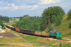 Summer landscape with the freight train Stock Images