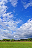 Summer landscape g. Summer rural landscape with cloudy sky, green grass and trees Stock Images
