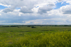 Summer landscape of green fields and cloudy sky. Rural scene. Royalty Free Stock Photography