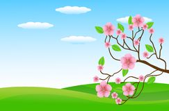 Summer landscape with a green glade and pink flowers. Vector illustration Royalty Free Stock Images