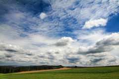 Summer landscape with green grass Stock Image