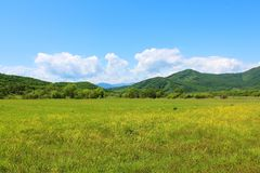 Summer landscape with green grass, hills road and clouds. Sanny summer landscape with green grass, yellow meadow flowers, hills and clouds stock photo