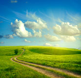 Summer landscape. With green grass, road and clouds Royalty Free Stock Images