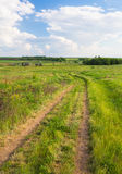 Summer landscape with green grass and road Royalty Free Stock Image