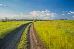 Summer landscape with green grass and road Royalty Free Stock Photos