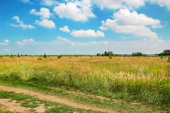 Summer landscape with green grass, road and clouds Royalty Free Stock Images