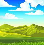 Summer landscape with green meadow Stock Images