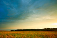 Summer landscape with hayfield. And storm clouds Royalty Free Stock Photography