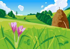 Summer landscape with a haystack illustration Royalty Free Stock Photo