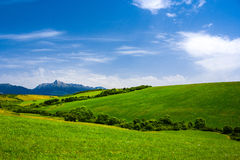 Summer landscape. With high mountains Stock Photos