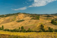 Summer landscape with hillside in Italy Stock Photography