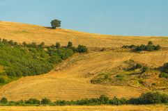 Summer landscape with hillside in Italy Royalty Free Stock Photos