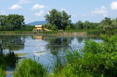 Summer landscape in Hungary - a stilt house, a backwater, trees, reeds, blue sky and clouds Stock Image