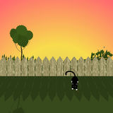 Summer landscape. illustration of a fence, a cat and ladybug on sunset sunrise background. Vector Royalty Free Stock Photo