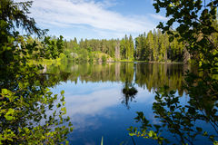 Summer landscape on the island of Valaam in Russia Royalty Free Stock Photo