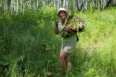 Joyful elderly woman with a bouquet of flowers in the forest. royalty free stock image