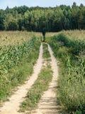 Summer landscape in the Kaluga region of Russia. Stock Photo