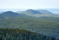 Summer landscape at the Koli National PArk in Finland. stock photography