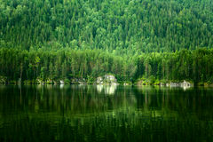 Summer landscape with lake Stock Photography