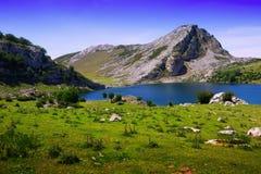 Summer landscape with lake Stock Image