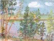 Fur-trees at lake. Summer landscape, lake birches in Finland Royalty Free Stock Image