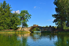 Summer landscape with lake and bridge in Gatchina park, Royalty Free Stock Photography