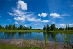 Summer Landscape. Lake In A Golf Course hidden villa between trees stock image