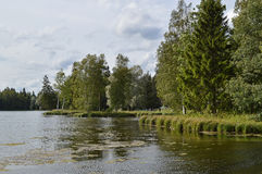 Summer landscape at the lake. Royalty Free Stock Photo