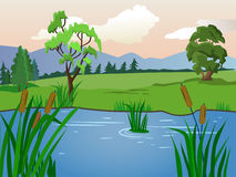 Summer landscape. Lake with reeds. Clear weather. Royalty Free Stock Photos