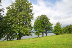 Summer landscape with lake Seliger Royalty Free Stock Photo