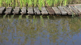 Summer landscape with lake and wooden bridge stock video footage