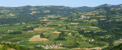 Summer landscape in Langhe (Italy) Royalty Free Stock Image