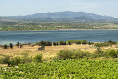 Summer landscape in Languedoc-Roussillon (France) Royalty Free Stock Photos