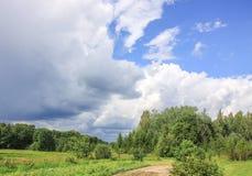 Summer landscape in Latvia, East Europe. Summer landscape in Latvia, East Europe royalty free stock images